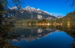 Vista outonal do lago Tovel, Val di Non dentro do parque natural de Adamello-Brenta, Trentino Alto-Adige, Itália fotografia de stock royalty free