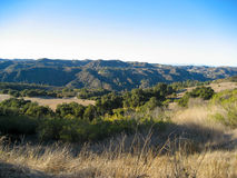 A vista overlooking Topanga State Park's oak trees and chaparral Royalty Free Stock Images