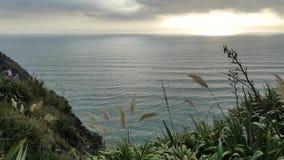 Vista pacífica del océano y de los rayos solares almacen de video