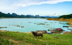 Vista pacifica di un villaggio a distanza Immagine Stock Libera da Diritti