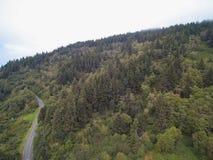 Vista panorámica aérea del paisaje de la montaña con los árboles Fotografía de archivo