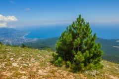 Vista panorámica de la ciudad de Yalta de la montaña de Ai-Petri. Imágenes de archivo libres de regalías