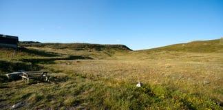 Vista panorámica de la meseta Valdresflye de la montaña Imagen de archivo libre de regalías