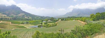 Vista panorámica de la ruta del vino de Stellenbosch y del valle de viñedos, fuera de Cape Town, Suráfrica Foto de archivo libre de regalías