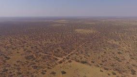 Vista panorámica de la sabana en Namibia almacen de video