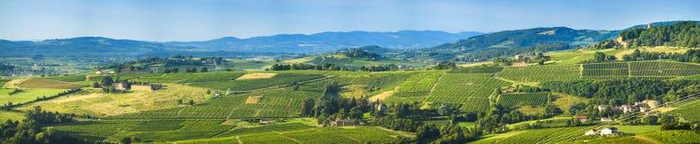 Vista panorámica de la tierra del Beaujolais, Francia Fotos de archivo