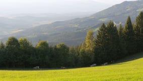 Vista panorámica de montañas y del prado verde en las montañas, Austria almacen de metraje de vídeo