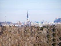 Vista panorámica de Tallinn imagenes de archivo
