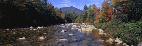 Vista panorámica de un canal del otoño a lo largo de la carretera de Kancamagus en el bosque del Estado blanco de la montaña, New Foto de archivo