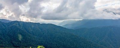 Vista panorámica de una cordillera cubierta con el bosque en nubes gruesas fotos de archivo libres de regalías