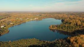 Vista panorámica del bosque del otoño y de un pequeño lago almacen de metraje de vídeo