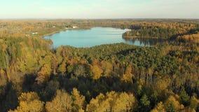 Vista panorámica del bosque del otoño y de un pequeño lago almacen de video