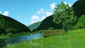 Vista panorámica del campo verde con el río y de las montañas cubiertas por el bosque verde en día soleado del verano almacen de metraje de vídeo