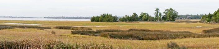 Vista panorámica del pantano Fotografía de archivo libre de regalías