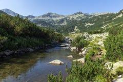 Vista panorámica del pico y del río de la montaña, montaña de Banderishki Chukar de Pirin Fotografía de archivo