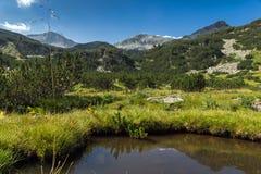 Vista panorámica del pico y del río de la montaña, montaña de Banderishki Chukar de Pirin Fotos de archivo libres de regalías