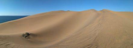 Vista panorámica a las dunas y al océano de arena detrás de ellos fotos de archivo