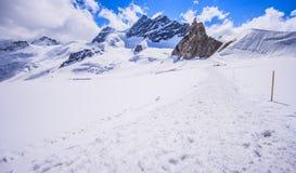 A vista panorâmica bonita impressionante de cumes Snowcapped da montanha de Bernese ajardina na região de Jungfrau, Bernese Oberl Imagem de Stock