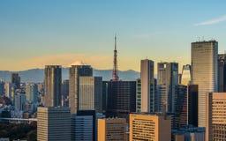 Vista panorâmica da antena do Tóquio Imagens de Stock Royalty Free