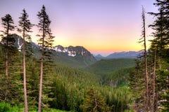 Vista panorâmica da montagem Rainier National Park Foto de Stock Royalty Free