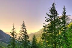 Vista panorâmica da montagem Rainier National Park Fotografia de Stock Royalty Free