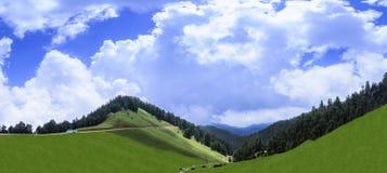 Vista panorâmica da paisagem bonita do vale de Janjehli perto de Sh imagem de stock royalty free
