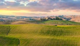 Vista panorâmica da paisagem típica do campo de Toscânia fotografia de stock
