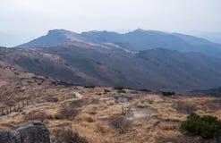 Vista panorâmica da planície da montanha com grama de prata Imagens de Stock
