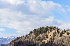 Vista panorâmica das montanhas dos cumes das dolomites perto de Trento em Itália Foto de Stock