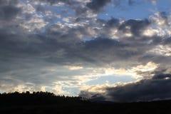 Vista panorâmica das montanhas obscurecida em parte por nuvens e por névoa com as árvores austeros contra um céu turbulento fotos de stock royalty free