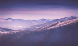 Vista panorâmica de montanhas do inverno no nascer do sol Ajardine com montes nevoentos e as árvores cobertos com a escarcha Imagens de Stock