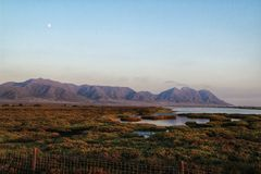 Vista panorâmica de pantanais de Cabo de Gata com os flamingos cor-de-rosa no fundo imagem de stock