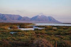 Vista panorâmica de pantanais de Cabo de Gata com os flamingos cor-de-rosa no fundo imagens de stock