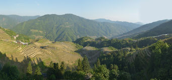 A vista panorâmica de terraços do arroz de Longji, província de Guangxi, China Fotos de Stock