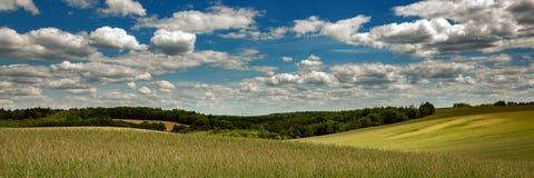 vista panorâmica de um campo agrícola montanhoso com as correias da floresta no fundo sob um céu nebuloso fotos de stock royalty free