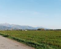 vista panorâmica do prado no luni Foto de Stock Royalty Free