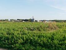vista panorâmica do prado no luni Imagens de Stock Royalty Free