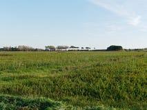 vista panorâmica do prado no luni Imagem de Stock
