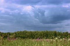 Vista panorâmica do prado verde e da floresta vistos de longe Um céu nebuloso escuro textured atmosférico e a última luz do s fotos de stock royalty free