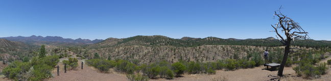 A vista panorâmica do vale de Bunyeroo, Flinders varia parque nacional, Austrália Fotos de Stock