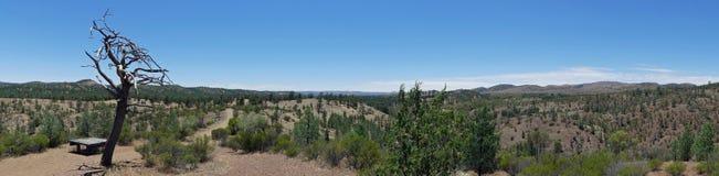 A vista panorâmica do vale de Bunyeroo, Flinders varia parque nacional, Austrália Fotos de Stock Royalty Free