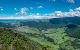 Vista panorâmica para esverdear campos, montes e oceano ?rea de Nelson, Nova Zel?ndia fotografia de stock royalty free