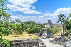 Vista panorâmica sobre pirâmides e templos do Maya no parque nacional Tikal na Guatemala Imagens de Stock