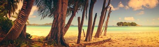 Vista panorâmico de uma praia tropical no alvorecer Estilo do vintage da ilha de Praslin, Seychelles, Oceano Índico Imagens de Stock