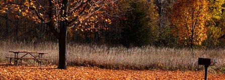 Vista panorâmico do parque Imagens de Stock Royalty Free