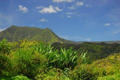 Vista panorâmico em Havaí fotografia de stock royalty free