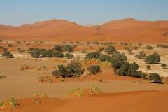 Vista panoramica con le alte dune nell'area Namibia di Sossusvlei Immagine Stock