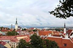 Vista panoramica dall'altezza di vecchia città di Tallinn immagine stock libera da diritti