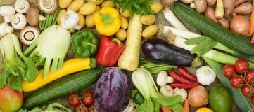 Vista panoramica dei frutti della verdura fresca Fotografie Stock Libere da Diritti