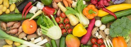 Vista panoramica dei frutti della verdura fresca Fotografia Stock Libera da Diritti